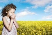 Omeopatia e allergia. Le Allergie Al Giorno D'Oggi