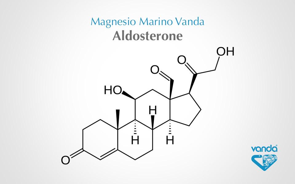 aldosterone (molecola)