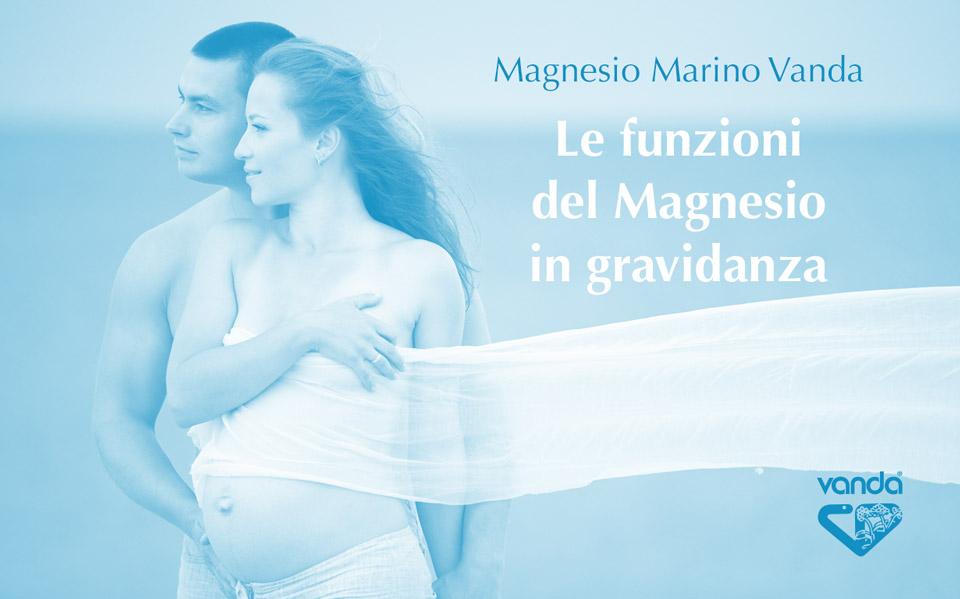 le funzioni del magnesio in gravidanza