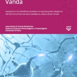 Valutazione in vitro dell'efficacia protettiva e di induzione potere mitogeno di NGF 5CH nei confronti del danno ossidativo su colture cellulari nervose