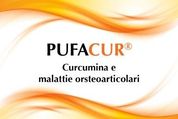 Curcumina e malattie osteoarticolari