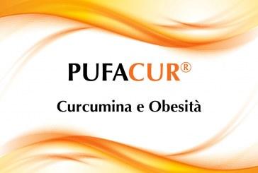 Curcumina e obesità