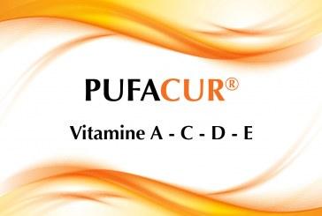 Le Vitamine A, C, D ed E nel Pufacur