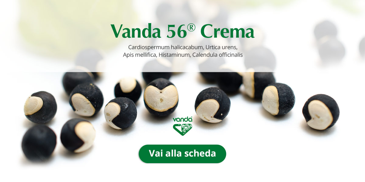 pomata omeopatica cardiospermum vanda 56
