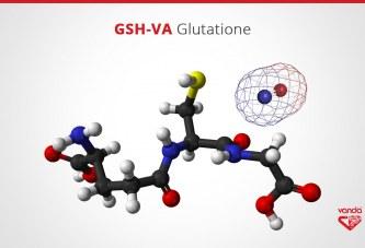 Glutatione: a cosa serve? Proprietà e benefici del Glutatione