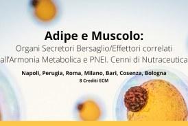 """""""Adipe e Muscolo"""": seminari di Napoli, Perugia, Roma, Milano, Bari, Cosenza e Bologna"""