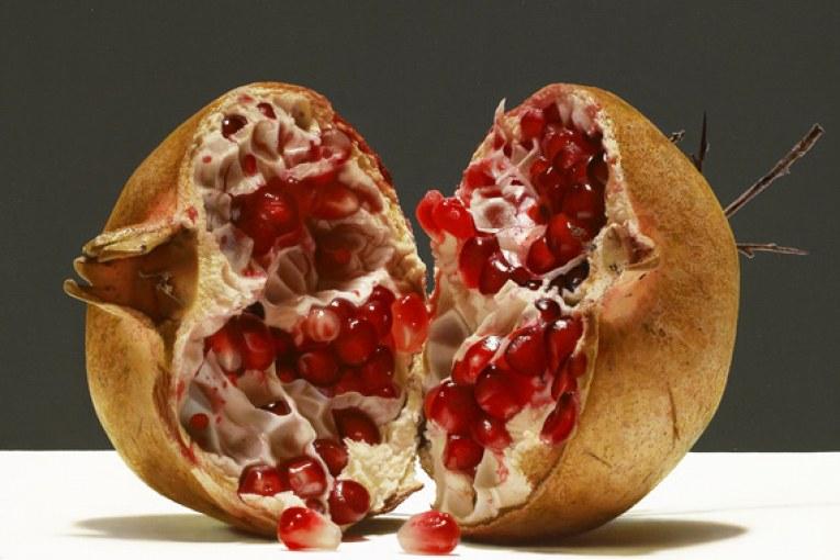 Stress, Alimentazione e Senescenza in chiave Immunologica