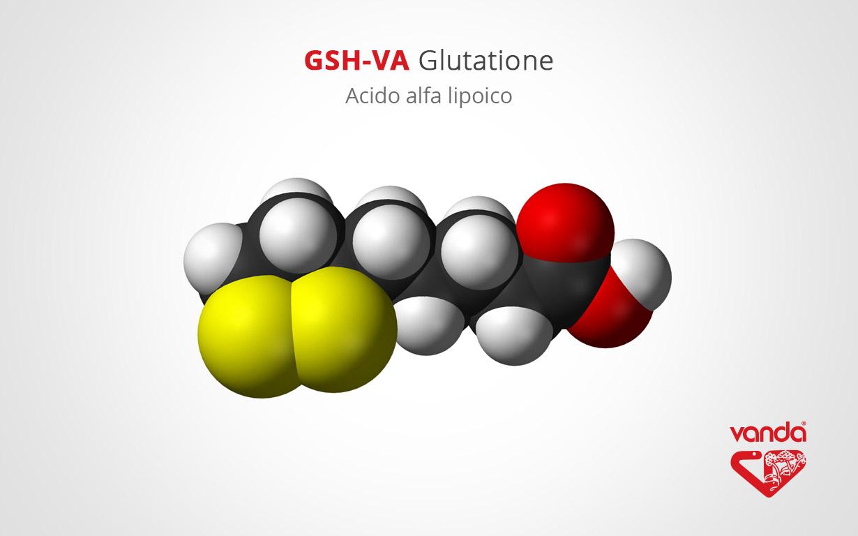 acido alfa lipoico (GSH-VA Glutatione)