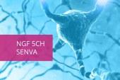 Revisione e Rielaborazione delle Indicazioni di alcuni Principi Terapeutici della Linea Immunologica Vanda
