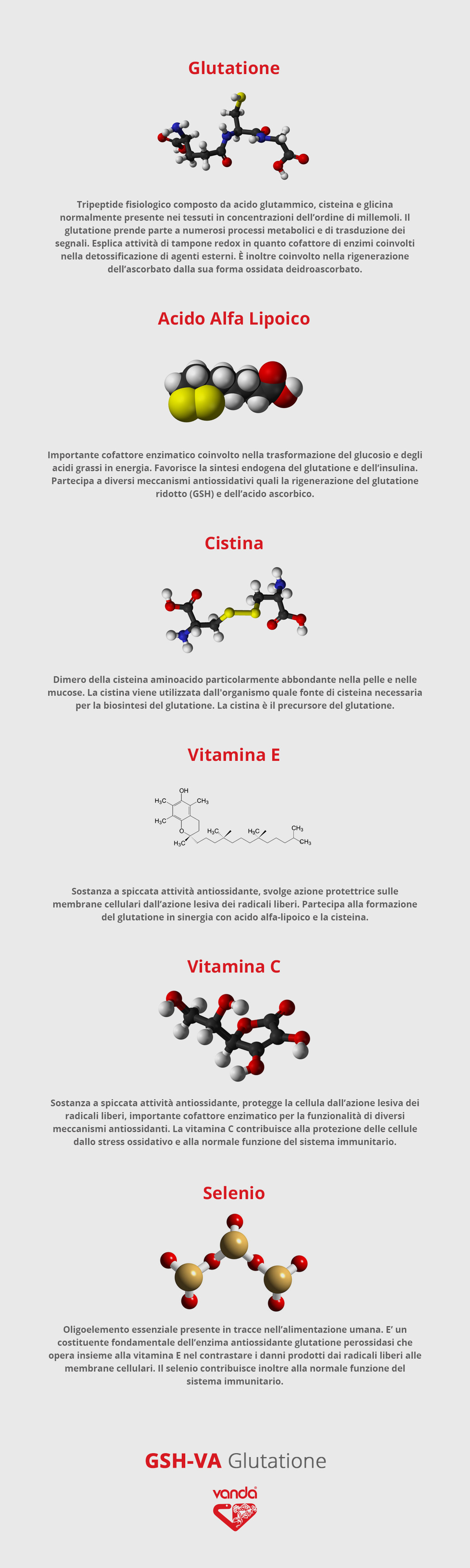 GSH Va Glutatione (infografica 3)