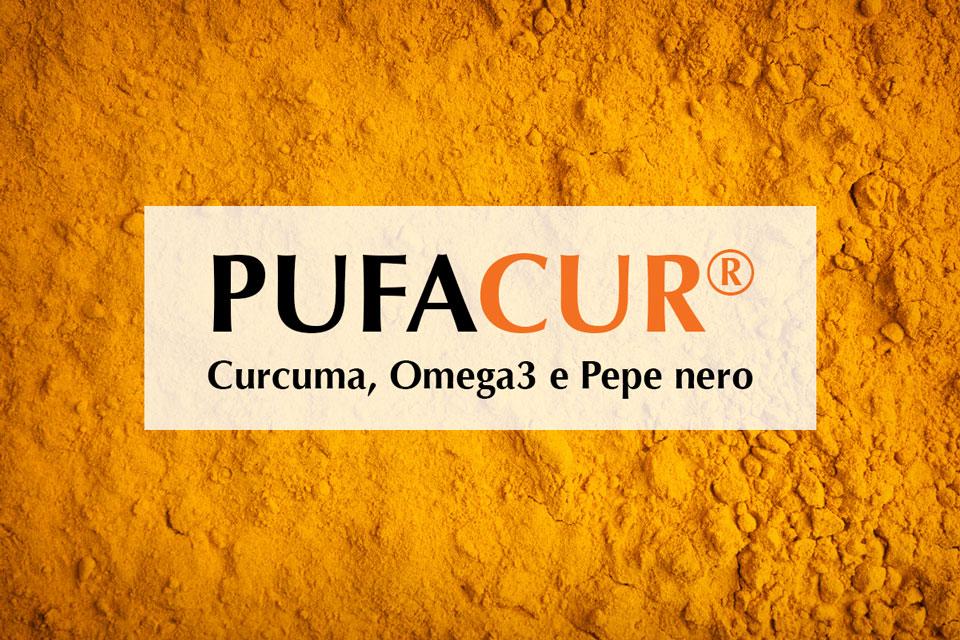 Curcuma: proprietà e benefici della curcumina nel Pufacur