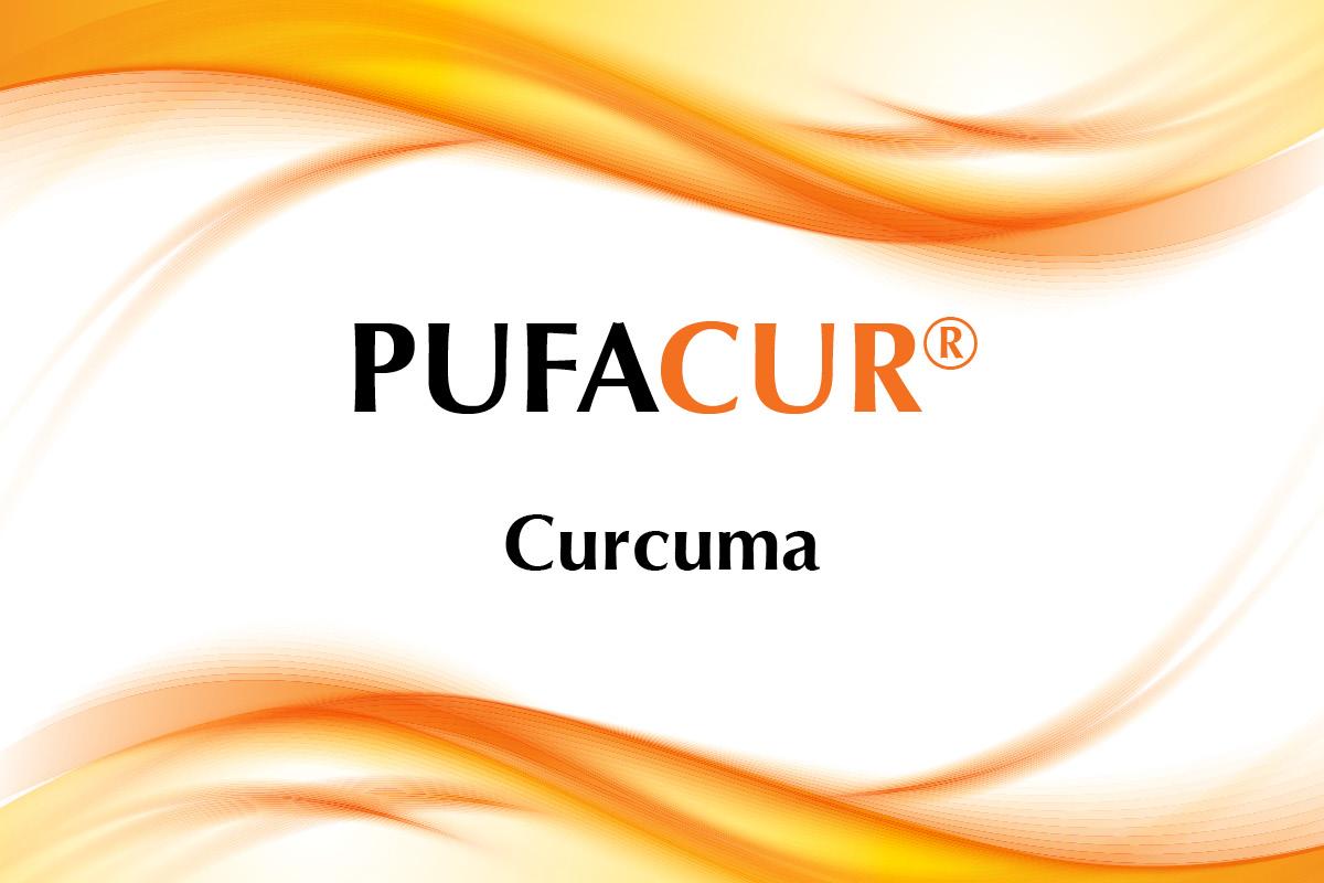 pufacur: il ruolo della curcuma