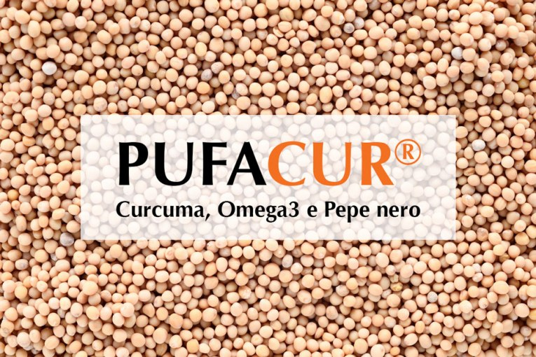 Zinco e Selenio: il loro ruolo antinfiammatorio, antiobesità e antiossidante nel Pufacur