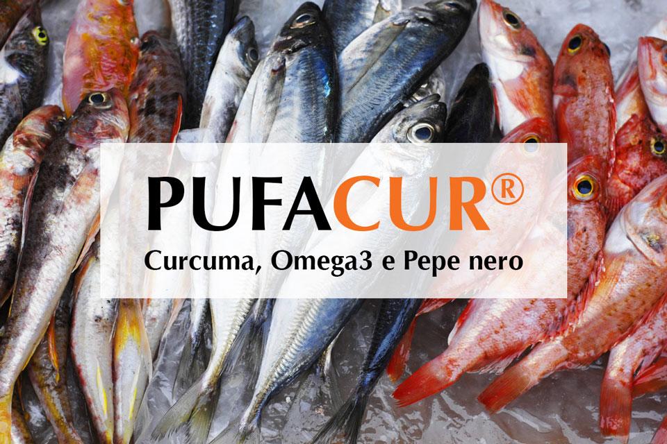Acidi grassi polinsaturi Omega-3 nel Pufacur: ALA EPA DHA