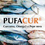 Pufacur: il ruolo degli Omega 3 nel trattamento della infiammazione cronica sistemica