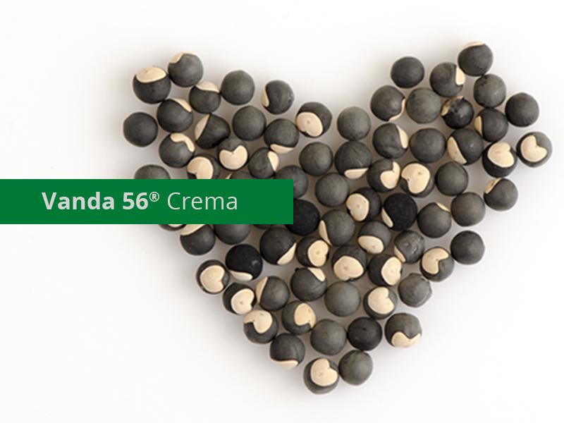 """Il """"Cuore"""" di Vanda 56® Crema ❤"""