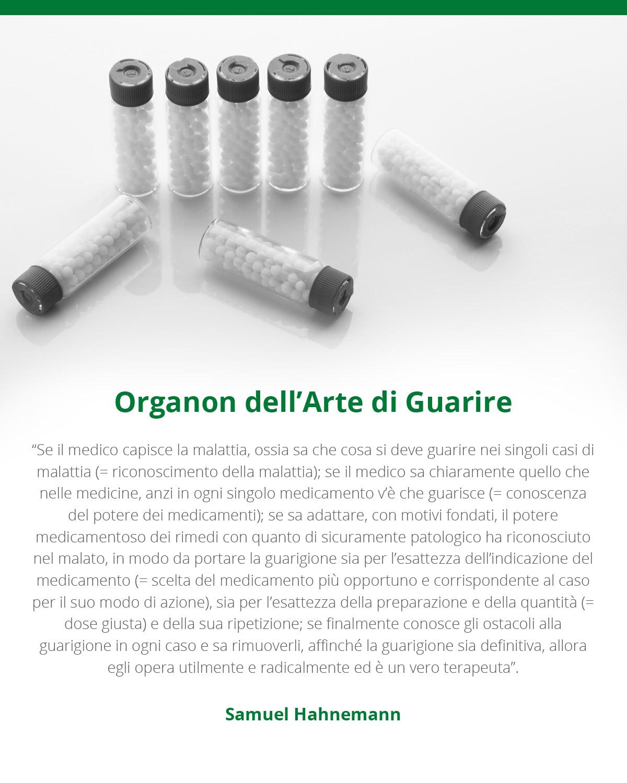 infografica organon dell'arte di guarire