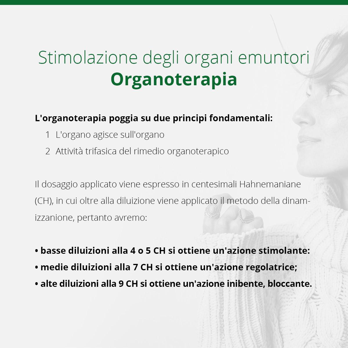Organoterapia: una infografica sul funzionamento degli organi emuntori