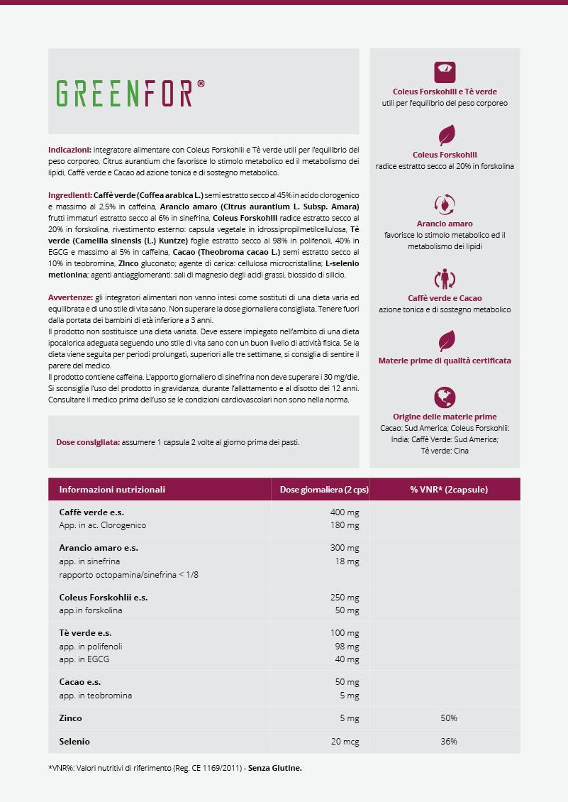 Greenfor infografica integratore termogenico