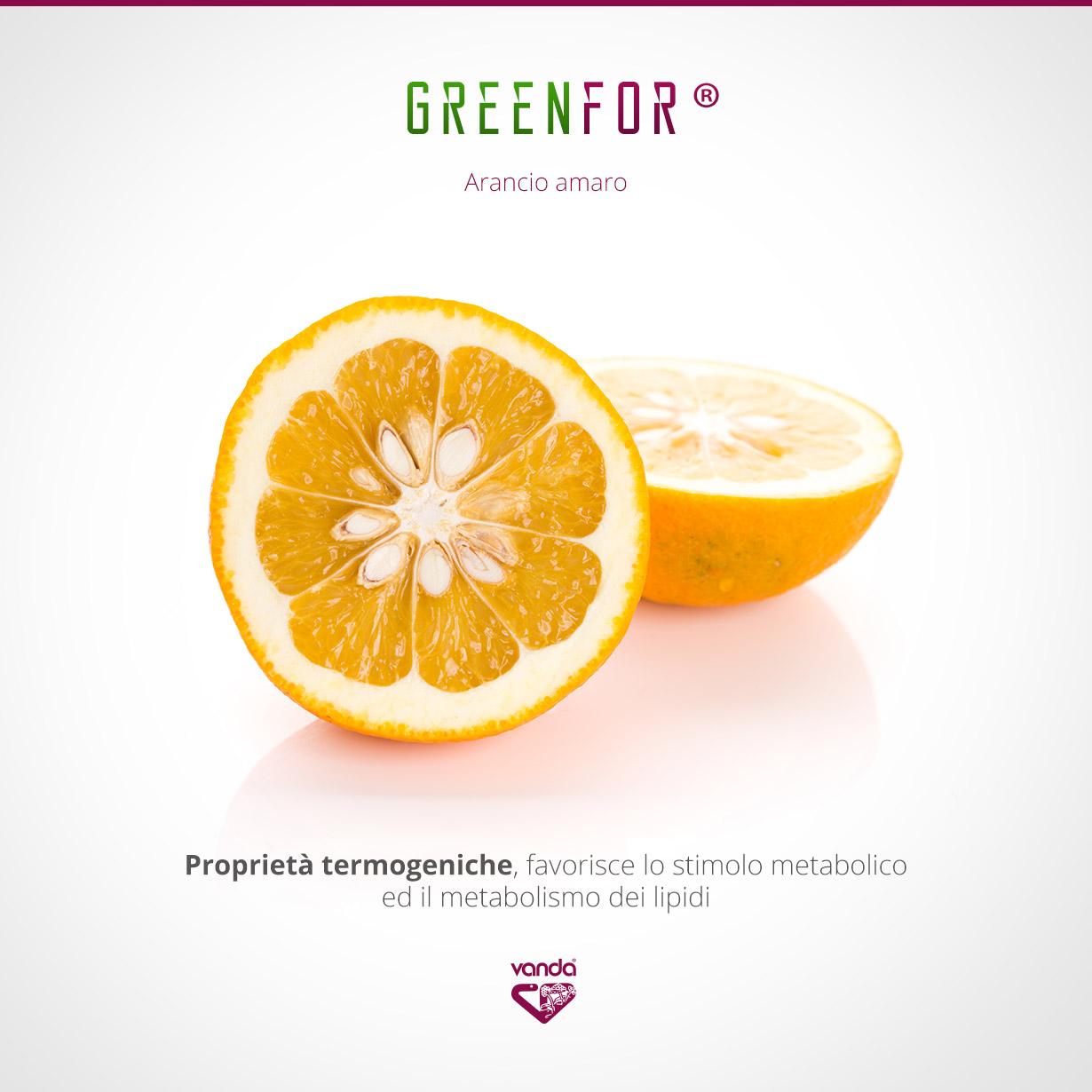 Arancio amaro, termogenico naturale