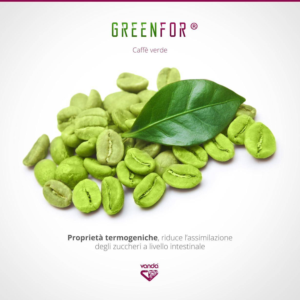 Termogenico Naturale: caffè verde