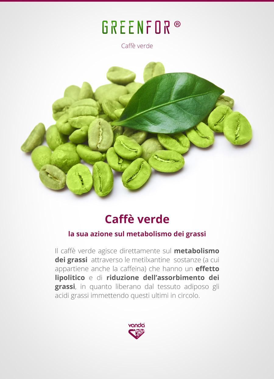 Caffè Verde, infografica (Brucia grassi)