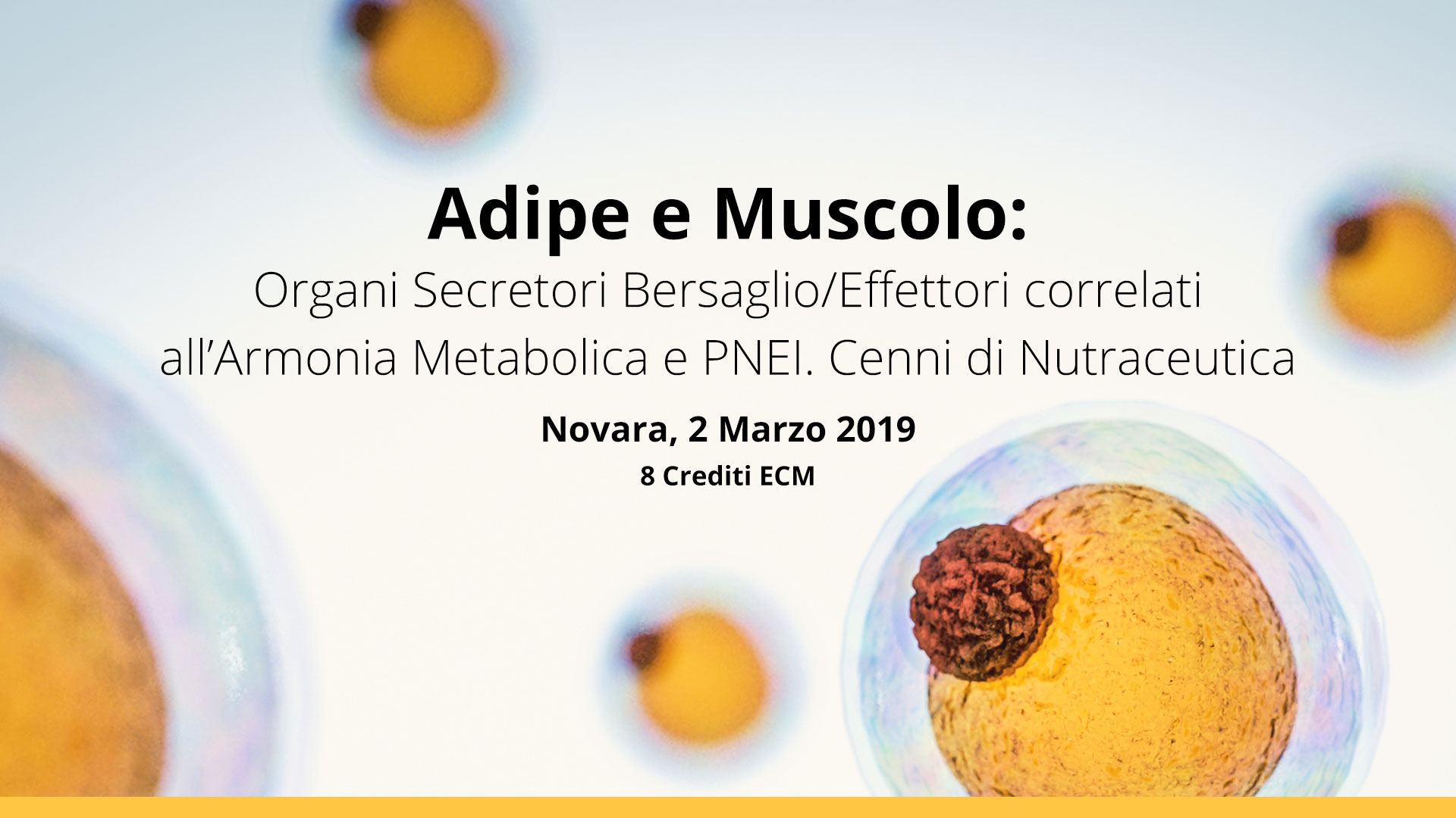 Novara, 2 Marzo 2019: Adipe e Muscolo: Organi Secretori Bersaglio/Effettori correlati all'Armonia Metabolica e PNEI