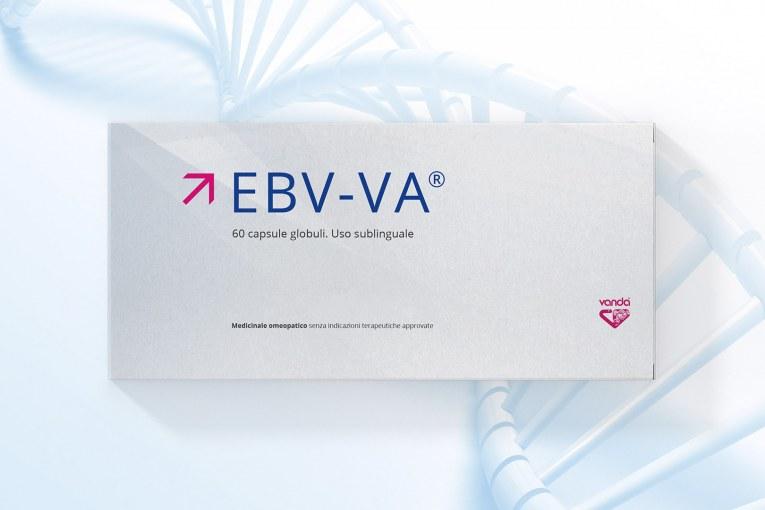 EBV-VA