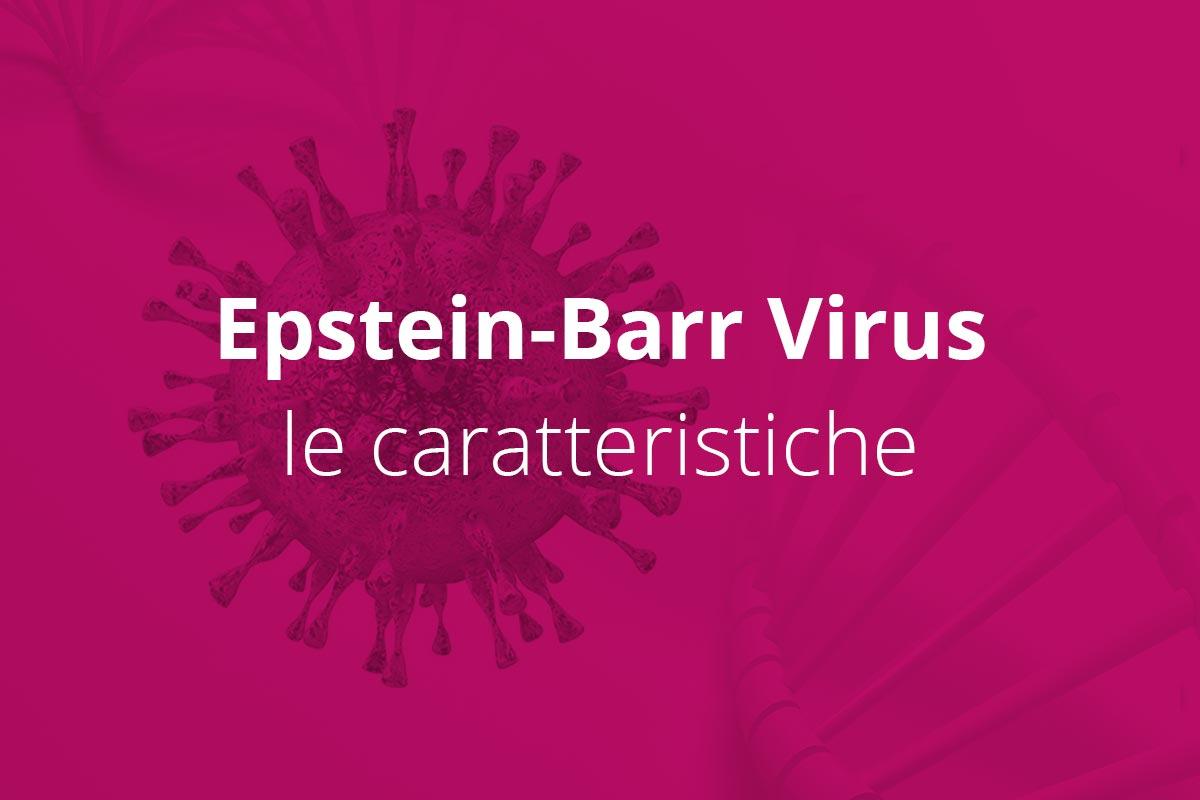 Le caratteristiche del Virus Epstein Barr