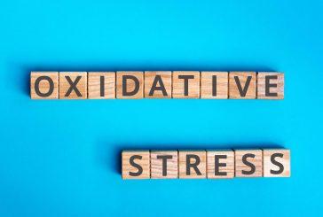 Esperidina, quercetina e stress ossidativo