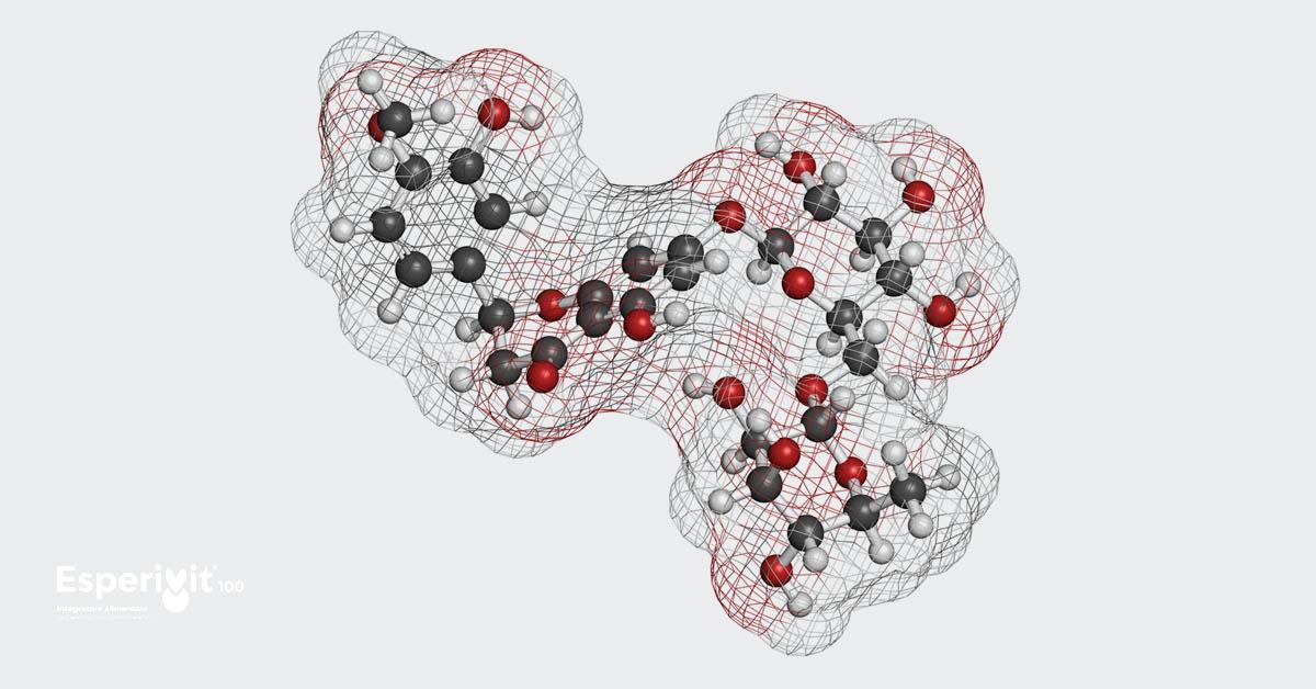 Che cos'è l'Esperidina? Approfondimento scientifico a cura di Paolo Bellavite