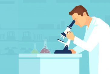 Rivalutazione dei fitochimici alimentari per l'infezione da coronavirus
